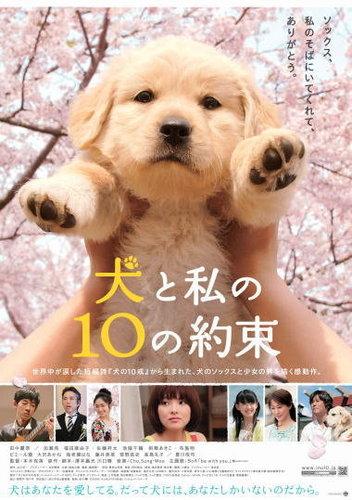 Poster của phim 10 lời hứa với chú chó của tôi