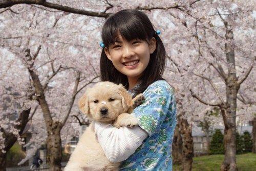 Cảnh trong phim 10 lời hứa với chú chó của tôi - 1